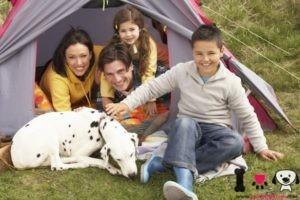 familia con su perro dámata de camping