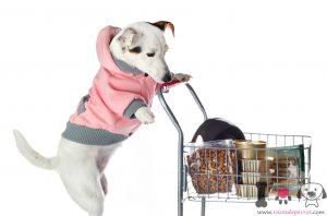 alimentación perros