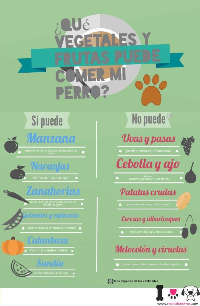 infographic sobre los vegetales que un perro puede y no puede comer
