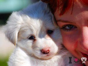 Niño con su perrita blanca