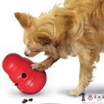 juguete para perro tipo kong