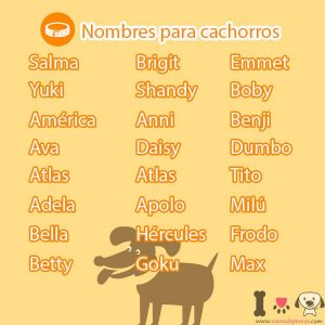 Nombres para cachorros