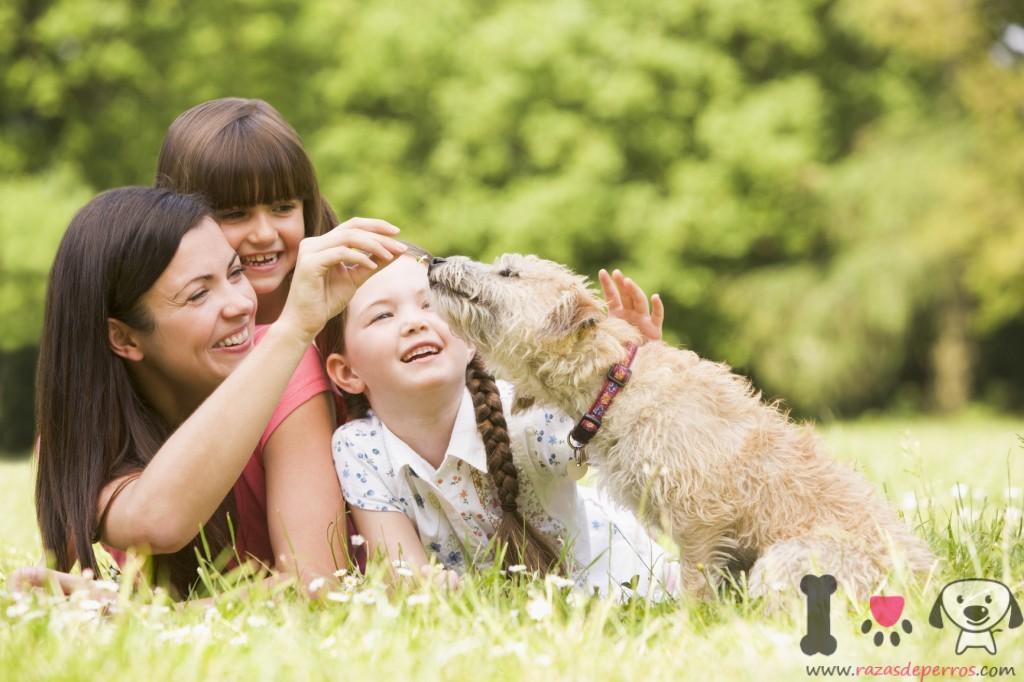 Madre y sus hijos con su perro  mestizo