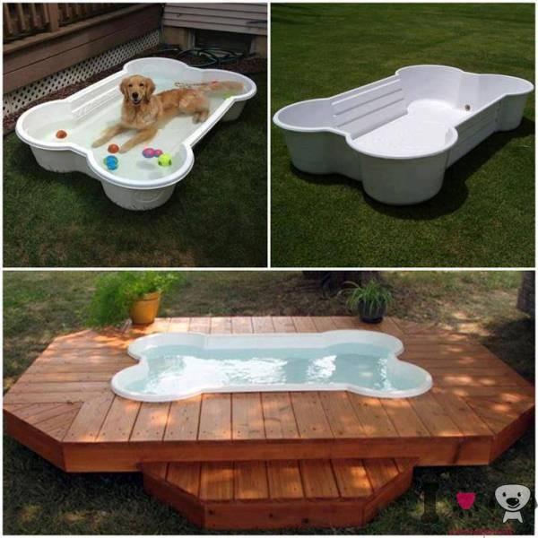 Piscinas para perros razas de perros for Piscinas plastico duro