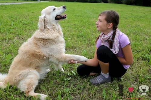 niña con su perro de raza grande