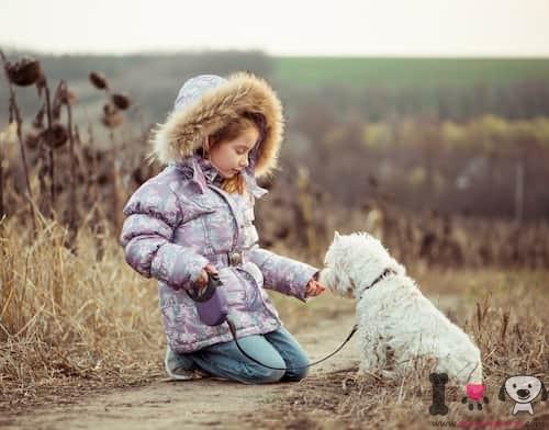 Niña con su perro pequeño