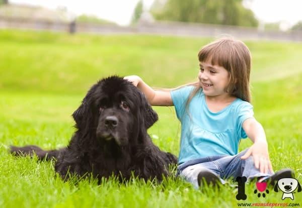niña con un perro negro