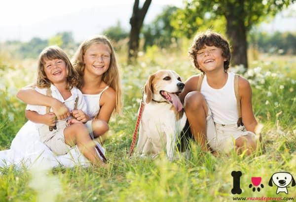 tres niños con su beagle adoptada